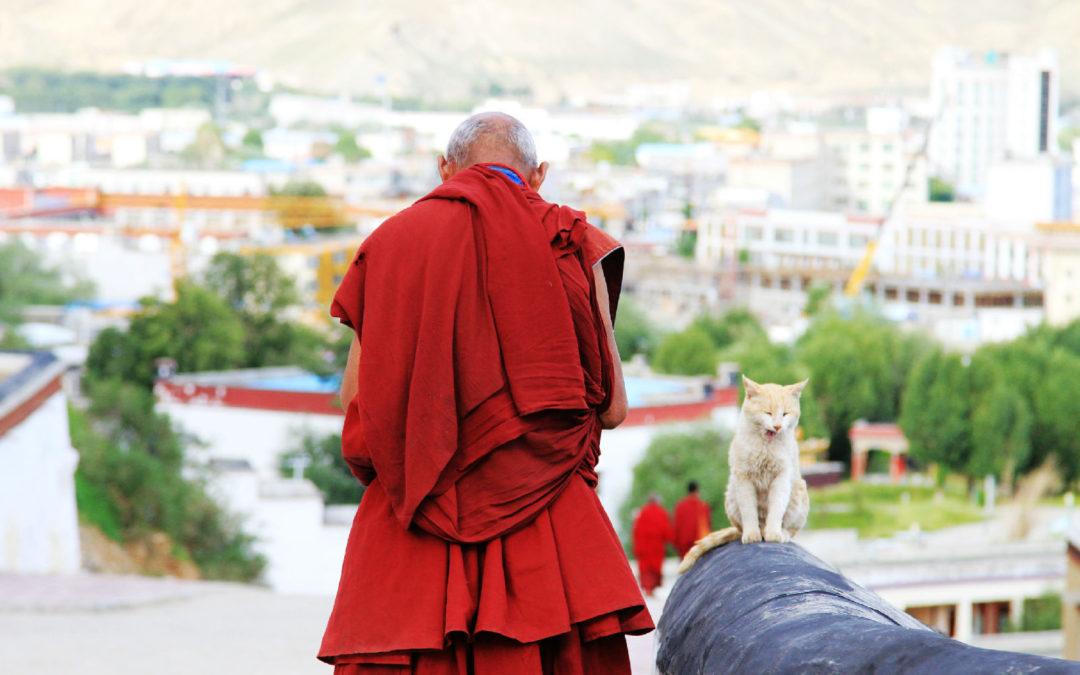 A Brief History of Tibetan Buddhism  བོད་རྒྱུད་ནང་བསྟན་གྱི་ལོ་རྒྱུས་གནས་བསྡུས།