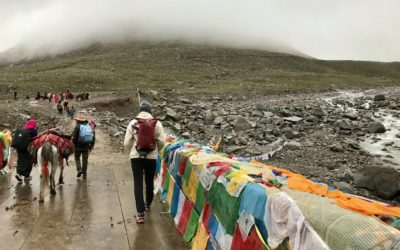 My Adventure Trip to Mt. Kailash